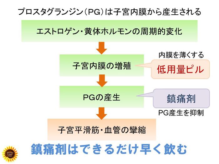 プロスタグランジン(PG)の作用